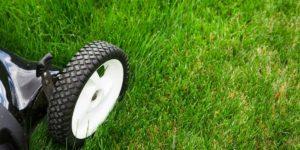 Honda lawn mowers